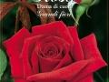 Rosa Dama di Cuori