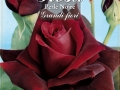 Rosa perle noire